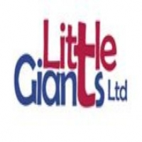 Little Giants Ltd logo